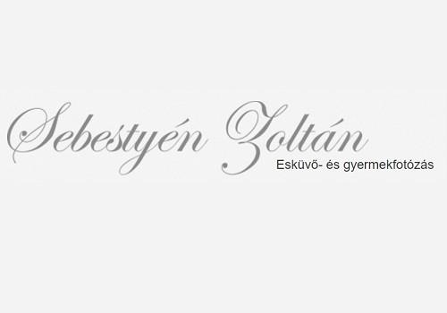 Sebestyén Zoltán - esküvői szolgáltató