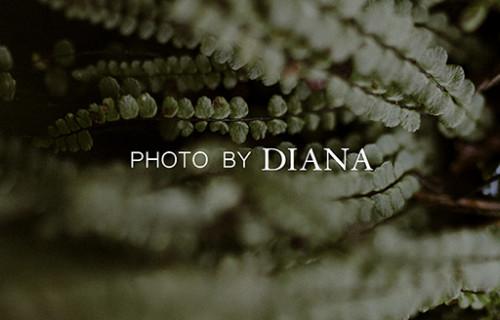 Photo by Diana - esküvői szolgáltató