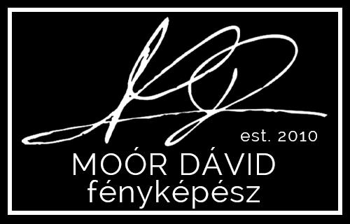 Moór Dávid - esküvői szolgáltató