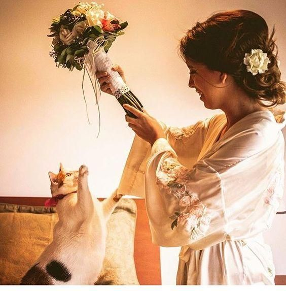 esküvő cica