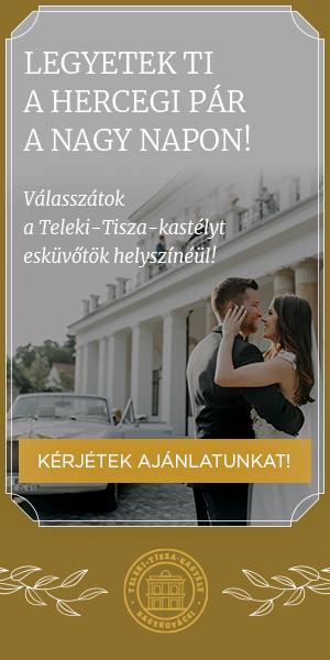 Teleki-Tisza Kastély - Blog jobb sidebar